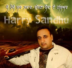 harry sandhu-hathyar copy